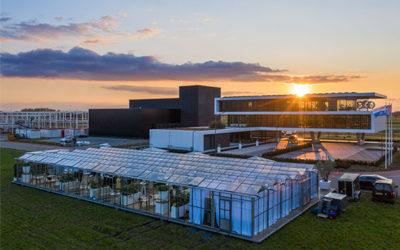 Nieuw geopend kantoor Borghese Real Estate en Pleijsier Bouw krijgt meervoudige internationale erkenning